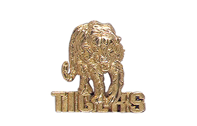 Tiger with Tigers Pin, Gold Tone Metal