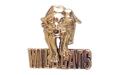 Wildcat with Wildcats Pin, Gold Tone Metal