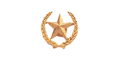 Star Pin, Gold