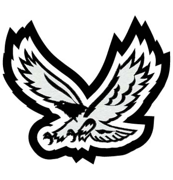 Eagle In Flight Patch 6